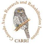 CARRI logo